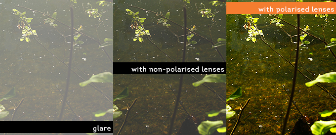 polarised sunglasses fishing  test