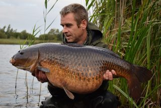 Big Common Carp for Si Bater